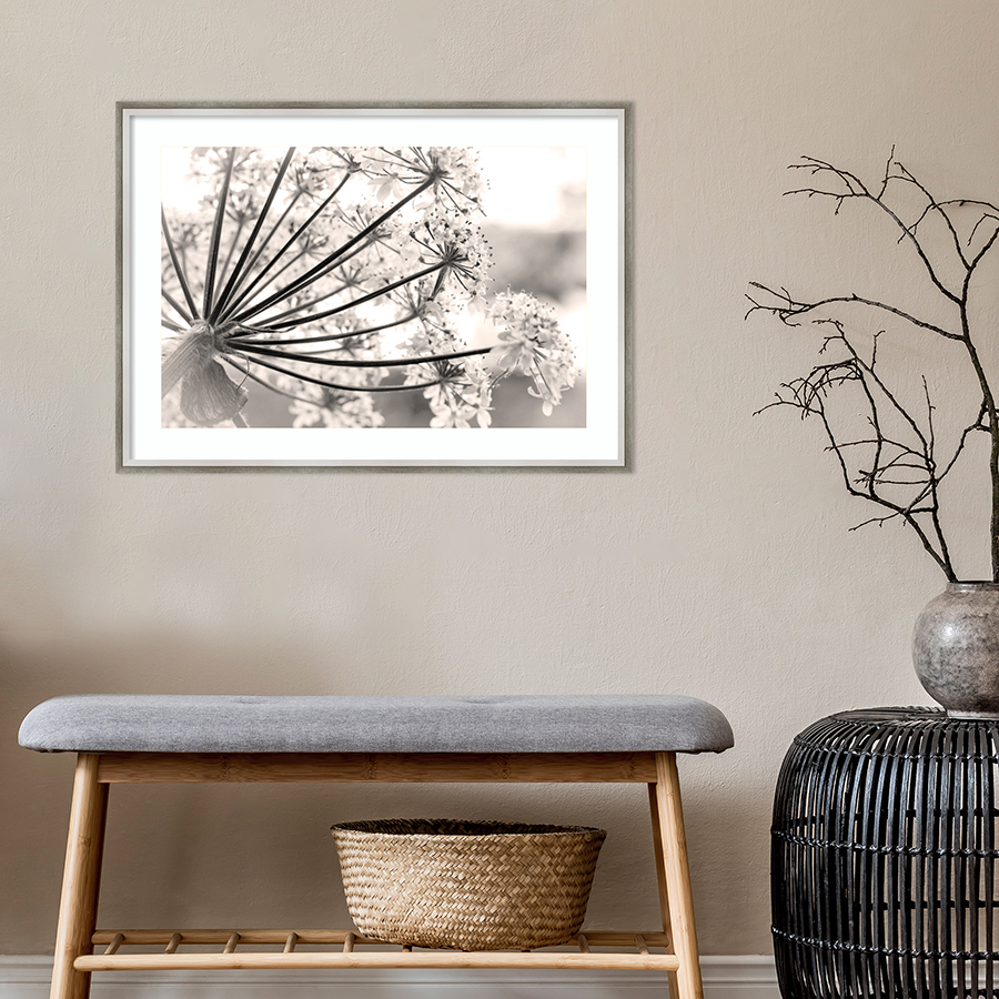 Framed dandelion picture over sitting bench