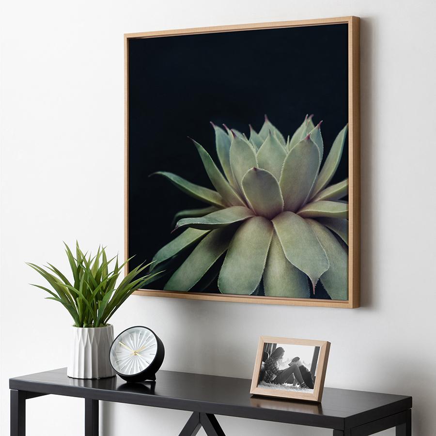Large framed plant canvas photo